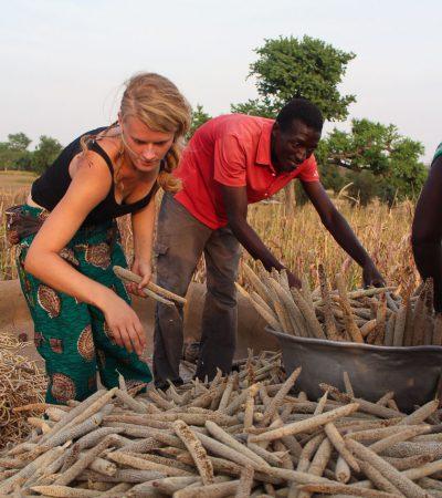 Kan compost de kleine boer in Noord-Ghana helpen?